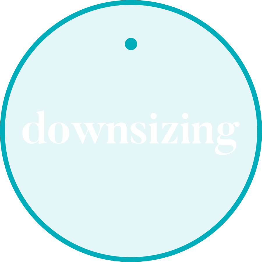 downsizing_case study
